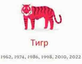 Год Тигр