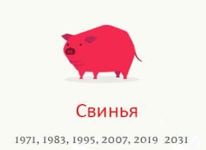 Год Свинья